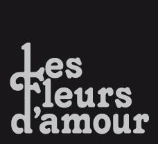 Tuinontwerp Norg Drenthe Les Fleurs Damour