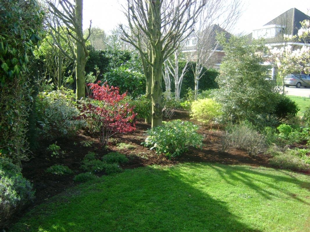 Tuinonderhoud norg drenthe les fleurs damour for Sd garden designs